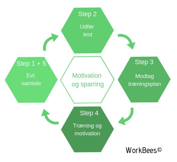 Model for Workbees konditionstræningskoncept