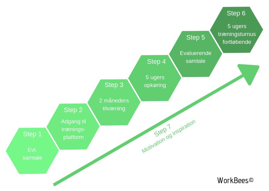 Model for Workbees styrketræningskoncept